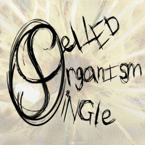 Single Celled Organism - Splinter In The Eye